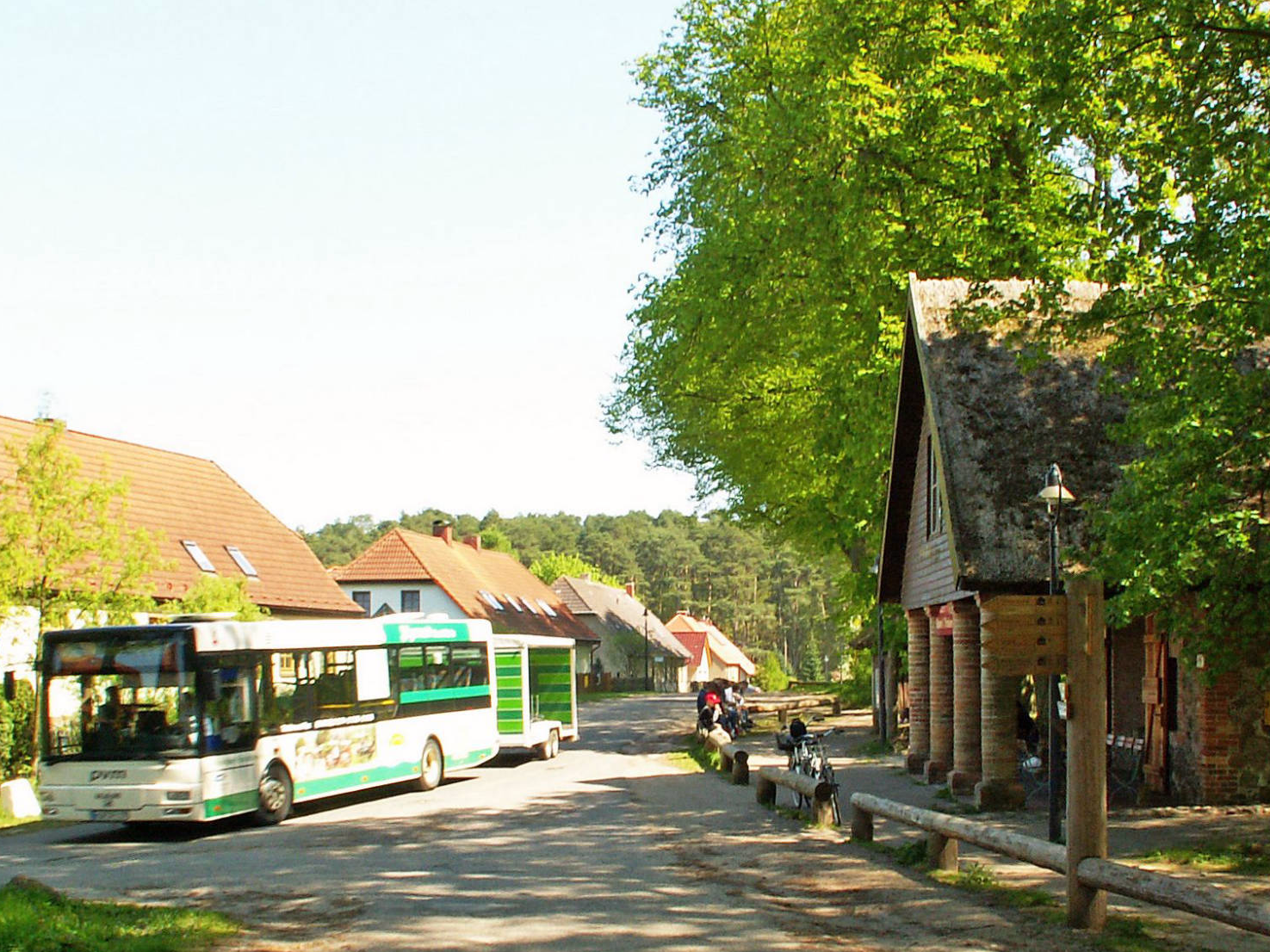 Mit dem Nationalparkticket in den Müritz-Nationalpark